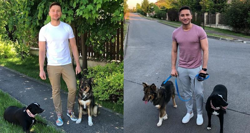 Собаки Лазарева